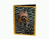 Yorkie All Occasion Greeting Card