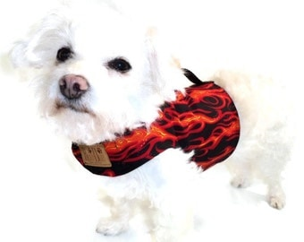 Flames Dog Harness - Dog Clothes - Custom Dog Harnesses - Dog Clothing - Clothes for Dogs - Harnesses for Dogs - Dog Coat - Dog Jacket
