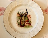 Beautiful French Vintage Plate With Peacocks, 1920s