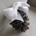 pineconeshoppe