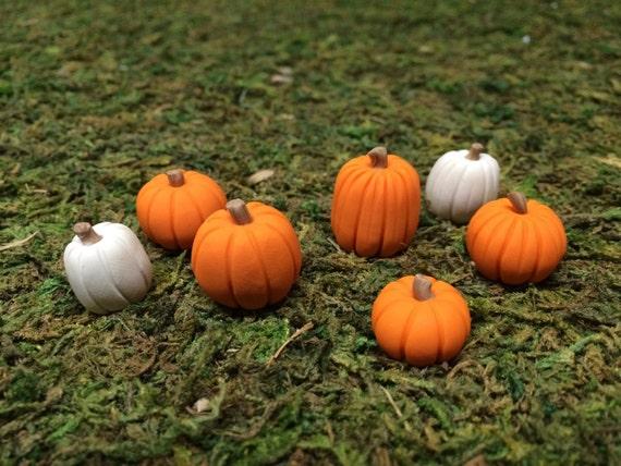 9 Fall Fairy Garden miniature pumpkins in orange and white terrarium decor accessories woodland garden