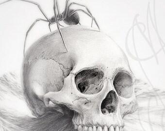 "Martinefa's original drawing - "" Water skull """