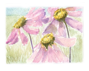 Watercolor Cosmos, Cosmos Print, Flower Print