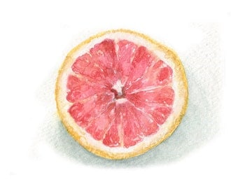 Watercolor Grapefruit, Pink Grapefruit Print, Citrus Print
