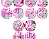 Month to Month baby stickers - Baby monthly stickers 1-12 months - Bodysuit Romper Stickers - Monthly Baby Stickers - GREY PINK ELEPHANTS