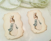 Peter Rabbit Stickers-Baby Shower Birthday Favor Stickers-Treat Bag Stickers Labels-Set of 12