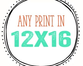 Any Print in 12x16