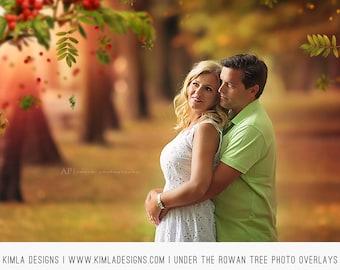 Under the Rowan Tree Photo Overlays