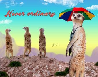 Cute Meerkat with Umbrella Hat Birthday Card: Never Ordinary