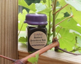 Pokeberry Historic Calligraphy and Drawing Ink - 1 oz. for dip pens