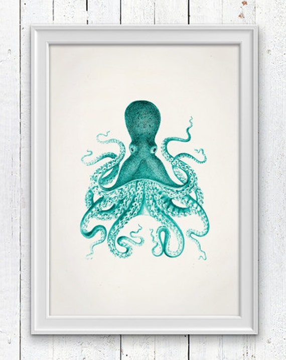 Vintage octopus no.09- sea life print- Wall decor poster , vintage natural history- The great turquise octopus SPOJ045