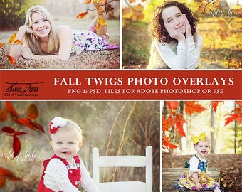 Photography Overlays Fall Twigs , Fall Photo Overlays, Autumn Twigs Photo Overlays, INSTANT DOWNLOAD