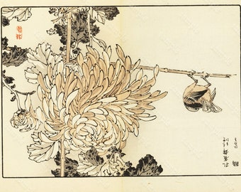 Original Kiku Hyakushu (One Hundred Chrysanthemums)Kono Bairei   1891 - WoodBlock Print