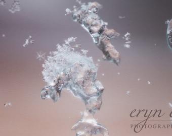 ice, blizzard, snow flakes, winter, macro photography, snow photography, wall art, home decor