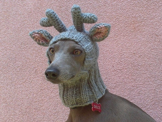 Knitting Pattern Hat Dog : Reindeer Dog Hat / Reindeer Dog Snood / Christmas Dog Hat