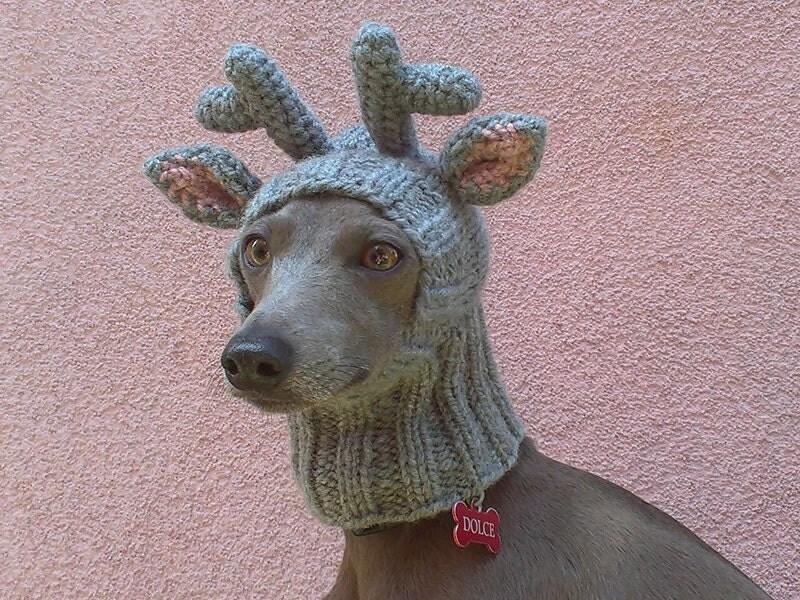 DELIVERY in 2018 / Reindeer Dog Hat / Reindeer Dog Snood
