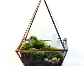 Moss Terrarium // Faceted // Crystals
