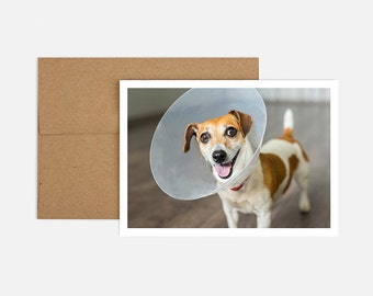 Cone Get Well Greeting Card