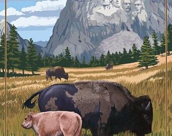 Black Hills, South Dakota - Bison Grazing (Art Prints available in multiple sizes)