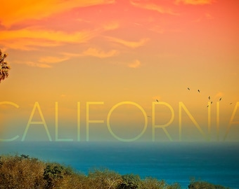 California - Sunset and Bird (Art Prints available in multiple sizes)