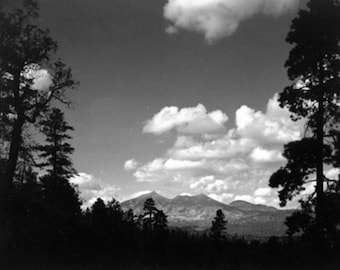 Flagstaff, Arizona - View of San Francisco Peaks Photograph (Art Prints available in multiple sizes)