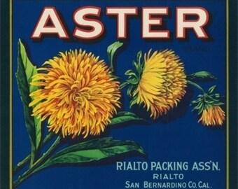 Aster Brand Citrus Crate Label - San Bernardino, CA (Art Prints available in multiple sizes)