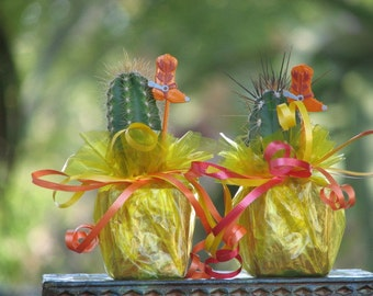 2 Decorated Mini Cactus Plant Party Favor Tex Mex Fiesta
