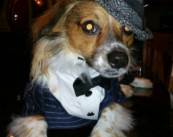 Good Fellas Gangster Dog Costume