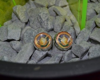 Divergent book cover earrings