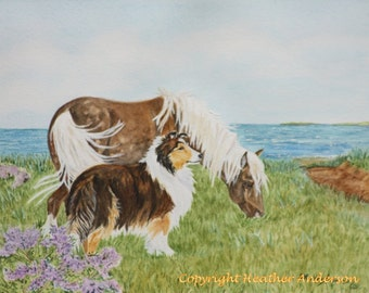 "8x10  Print, sable Sheltie with Silver Dapple Shetland Pony, ""She's Calling Us"", sable Shetland Sheepdog with silver dapple Shetland pony"