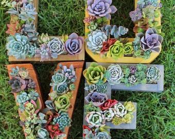 L-O-V-E Monogram succulent planter set 4 pieces