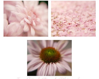 Bedroom wall art set of 3 11x14 botanical prints, pastel pink nature pictures, fine art floral photography, pale pink feminine art decor