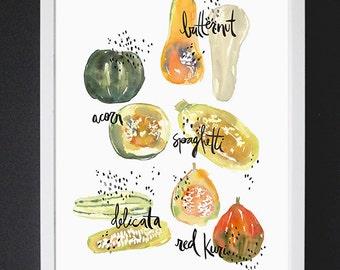 Squash Study - Watercolor Art Print