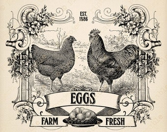 Instant Download Printable Farm Fresh Eggs Sign Chicken Rooster Hen iron on Fabric Image Transfer Kitchen Print Digital Graphics clipart