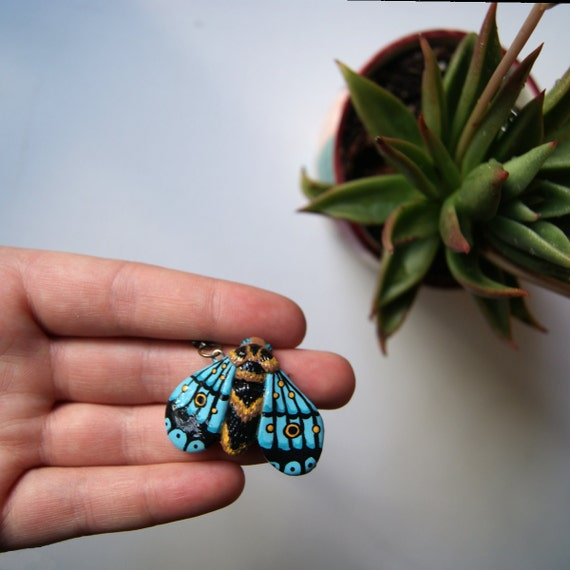 Teal moth entomology bug jewelry necklace