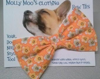 Orange Flowered Collar Bow Tie
