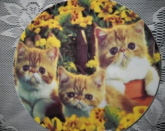 Kitten Plate - Three Cuddly Kittens Surrounded by Pansies