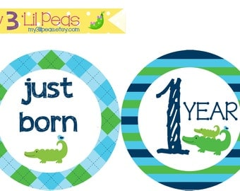 Add-On Alligators Just Born & 1 Year Onesie Stickers