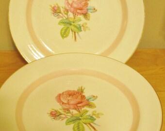 Calarose Dinner Plates