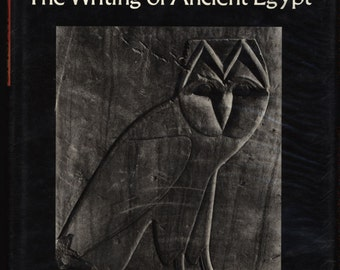 essay about egyptian art Free essay: showing how the egyptians had an influence on many cultures tombs are placing for the dead in most cultures of the ancient world, there were.