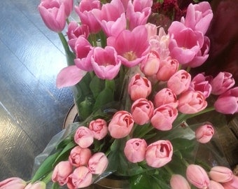 Photograph of pink tulips, digital file.