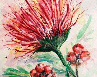 Mimosa Painting Original watercolor flower painting Tree blossom painting mimosa tree branch painting Red Pink flower Floral Botanical Art