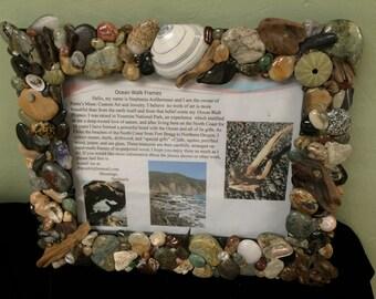 Beach Findings Mirror Shells Driftwood Stones Sea Urchins