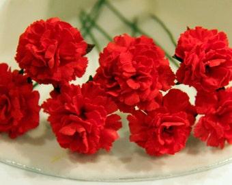 Edible Fondant/Gumpaste/ Sugar Flower 6 x Carnations for all Occasion/Cake topper /Cup Cake Decoration / Birthdays/Weddings/Anniversary etc