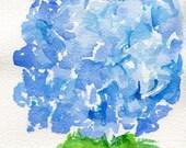 Blue Hydrangeas watercolors paintings original, 5 x 7, original watercolor painting of blue hydrangeas, small floral art, hydrangeas decor