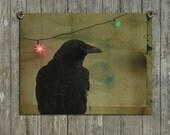 Crow Art Image, Raven Photograph, Gothic Wall Decor, Blackbird And Lights Picture, Abstract Bird - Dark Crow Celebration