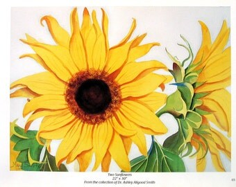 Flower Print - Two Sunflowers - Botanical Print -1996 Naturalist Book Page - 12 x 9
