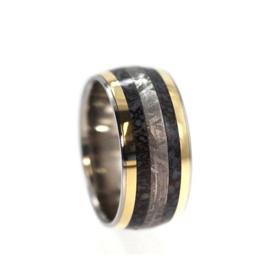 Dinosaur Bone Ring Gibeon Meteorite Band Two 14k By