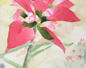 Indian Paintbrush 1305-01, a 5x7 original watercolor by Nan Henke matted to 8x10