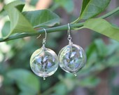 Big bubbles earrings - hollow clear blown glass spheres, sterling silver beads and earwires - free shipping USA